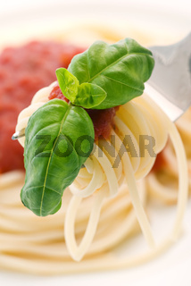 spaghetti with tomato sauce