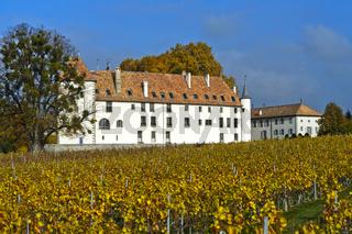 Schloss und Weingut Allaman, Chateau d'Allaman, Allaman, Waadt, Schweiz