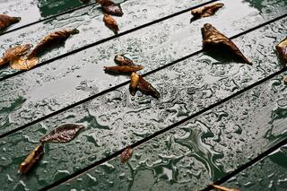Regentropfen auf einem Tisch / raindrops on a table