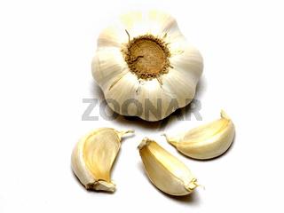 Knoblauch / garlic