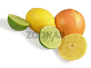 Zitrusfrüchte - Citrus fruits