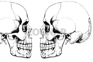Zwei im Profil