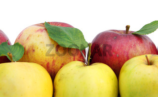 Yellow and red apples