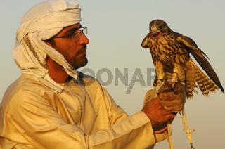 Falkner mit Jagdfalke, Dubai