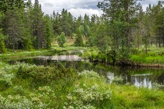 Telemark in Norwegen