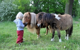 kleines Kind mit Ponys,litle child with Ponys,