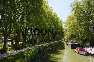 Canal du Midi bei Toulouse, Frankreich