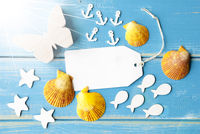Sunny Summer Greeting Card With Text Copy Space