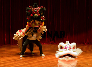 The traditional Chinese lion dance on stage