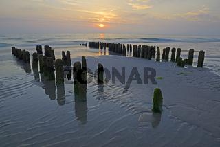 Algenbewachsene Buhnen bei Sonnenuntergang am Strand von Rantum,