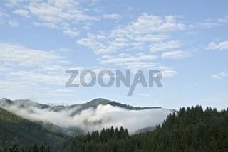 Voralpen mit Nebel im Nationalpark Kalkalpen