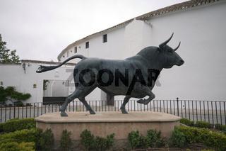 Toro, Andalusien, Spanien