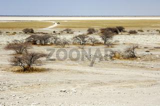 Makgadikgadi Salzwüste, Botswana