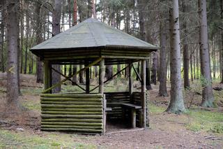 Wetterschutzhuette, Rasthuette an einem Wanderweg im Wald in Brandenburg, Deutschland, Europa