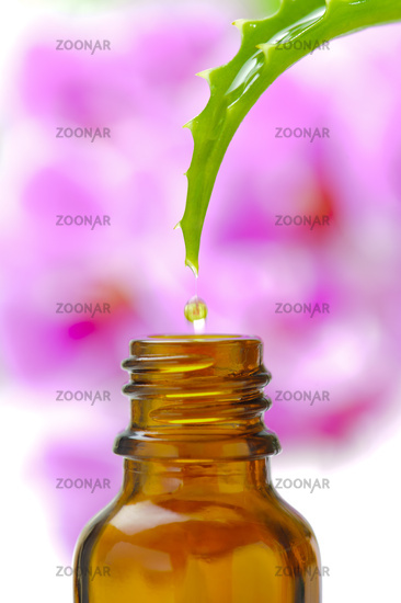 alternative medicine with herbal and homeopathic essence falling down from aloe vera medicinal plant