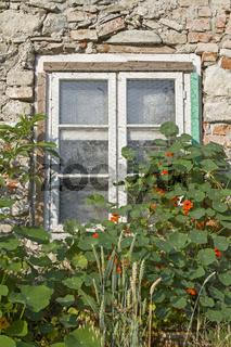 Fensteridylle an altem Haus
