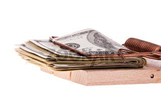 Dollar Geldscheine in einer Mausefalle