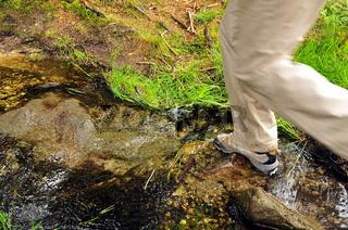Wandern Schuhe Bach Wald