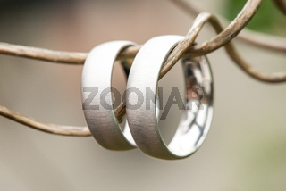 view on a pair of white golden wedding rings