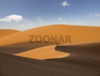 landscape in evening desert