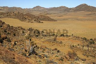 Goegap Naturreservat, Namakwaland, Südafrika
