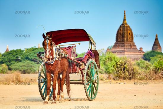 Horses cart waiting for tourist. Bagan,Myanmar