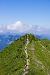 Wanderweg vom Fellhorn