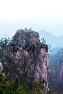 Monkey watching the sea in Huang Shan, China