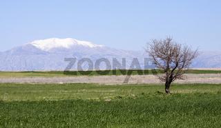 Hochebene im Taurusgebirge