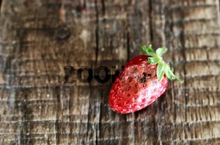 rotten strawberries concept gmo