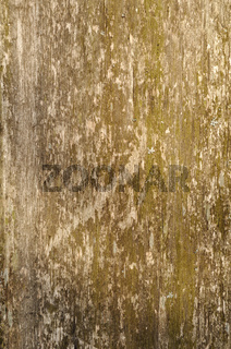 Close up of weathered wooden surface background