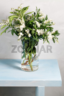 Spring snowflake Leucojum vernum bouquet in glass vase on blue wood table and gray background.