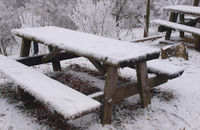 frost on a park bench