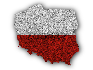 Karte von Polen auf Textur - Textured map of Poland