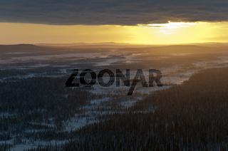 Sumpfgebiet im Muddus Nationalpark, Welterbe Laponia, Lappland, Schweden
