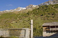 Auf einer Alm in Südtirol