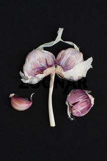 Pink garlic close-up on a black background.