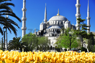 Sultan Ahmed Mosque or Blue Mosque in Istanbul