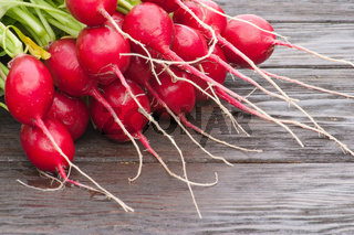Fresh radishes on the table. Large depth of field