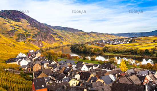 Autumn Colorful Moselle vineyards and residential landscape