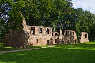 Ruine Kloster Nimbschen