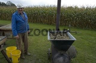 Küprbiskernölproduktion