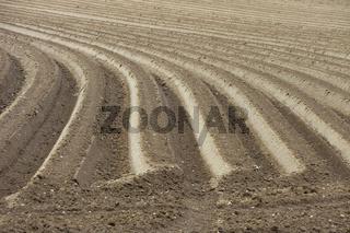 Ackerfurche - plough-land