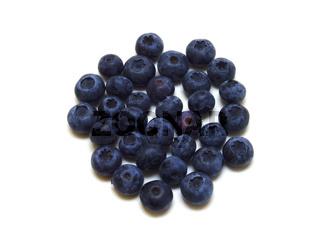 Heidelbeeren / blueberries (Vaccinium myrtillus)