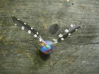 Flight feather of great woodpecker