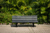 empty bench in park - wooden bench in tropical garden -