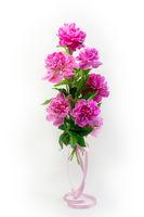 Bouquet of fresh pink peonies.