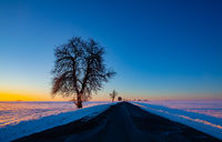 Empty road through snow-covered field after a blizzard at sunset.