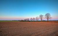 Spring landscape at sunrise in Central Bohemian Uplands, Czech Republic.