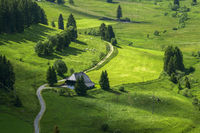 lonely farmhouse surrounded by meadows on Schluchsee in the Black Forest